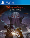 Neverwinter: Uprising for PlayStation 4