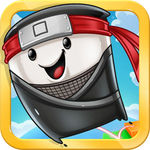 Landslide Ninja for iOS