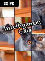 Intelligence: Cats