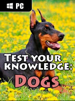 Test your knowledge: Dogs