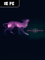 Once A Stray