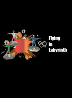Flying in Labyrinth