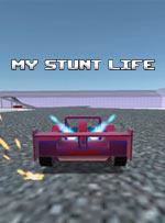 My Stunt Life