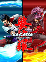 VASARA Collection for PC
