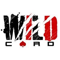 Studio Wildcard