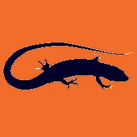 Space Lizard Studio
