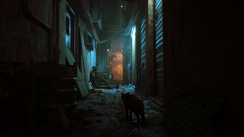 Stray Lets You Play As A Lonely Cat from the Future on the PS5