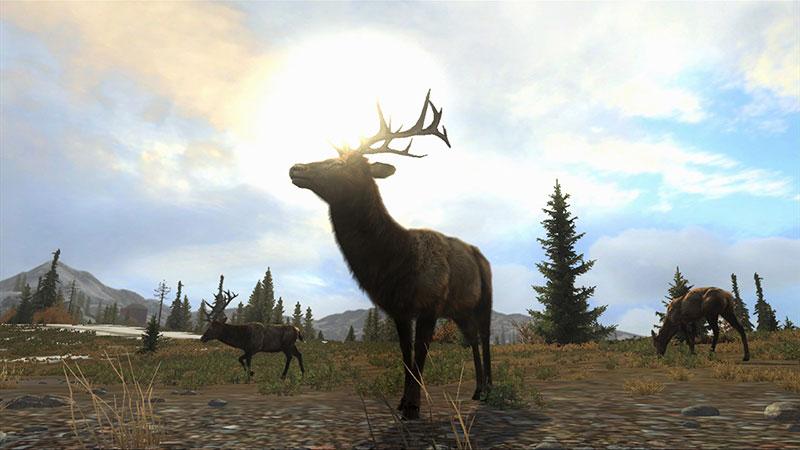 cabelas big game hunter pro hunts ps3 review